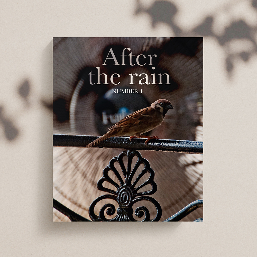 After+The+Rain+Square+Mockup